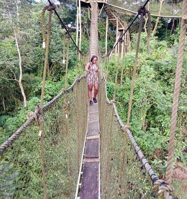 Air-Jays Canopy walkway